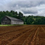 Tobacco Barns – Enfield, CT
