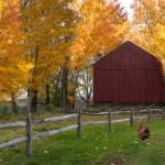 Fall at Lyman Orchards
